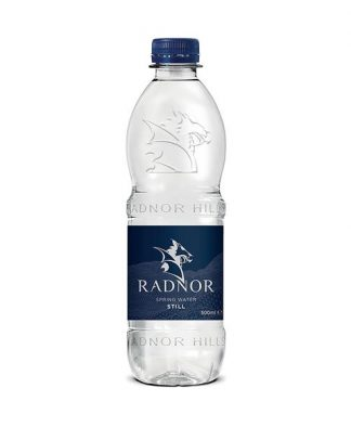 Radnor Hills Water 500ml 24Pk